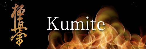 kumite tournament